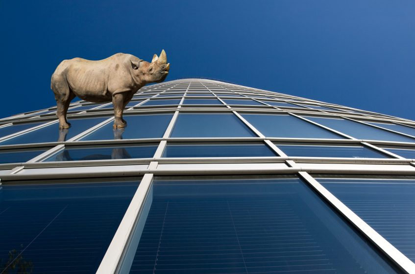 Rhino standung on skyscraper windows with perspective view